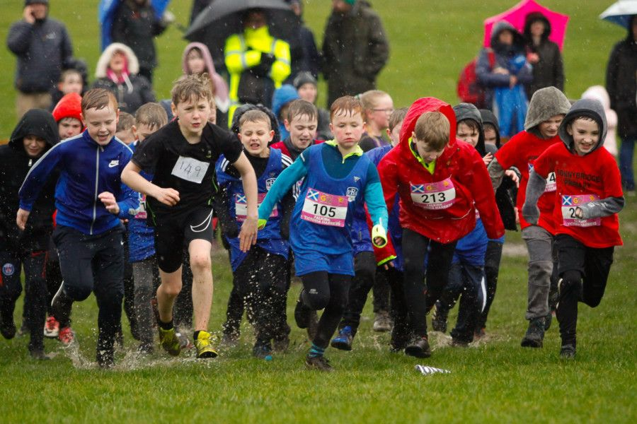 Falkirk Primary Schools Cross Country League 2019. Picture: Scott Louden