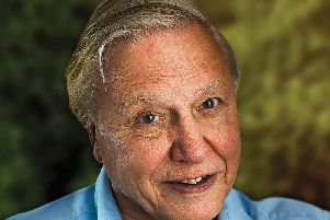 Scots have named Sir David Attenborough as the guest they would most like to share a takeaway with.