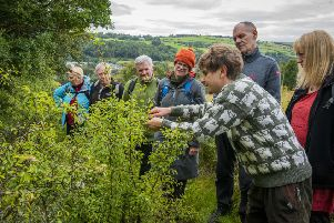 Foraging for food...learning about the wild bounty that Clydesdale has to offer proved a big success last year. (Pic: Chris Watt Photography)