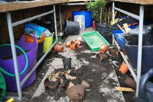 Fury as yobs destroy Leith Links allotment project