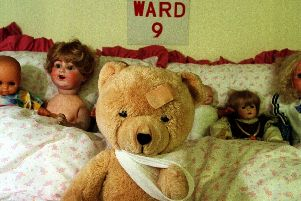A teddy after it was treated.