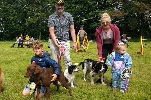Some of the participants of the Fun Dog Show, and the Springer Spaniel on the right was named 'Best in Show'