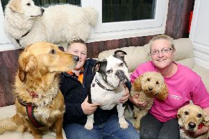 Elaine Johnston (right) is pictured with her daughter, Claire, and some of the dogs she walked for charity. Picture: Michael Gillen