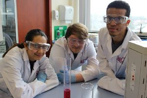 Falkirk and Northern Ireland students aim to prove science is fun