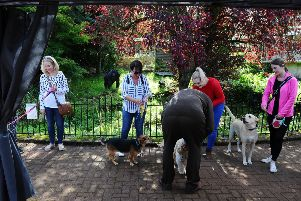 Torwood Fun Dog Show at Torwood Garden Centre on Saturday, September 7, in aid of Lyn's Small Animal Rehoming. Picture by Michael Gillen.