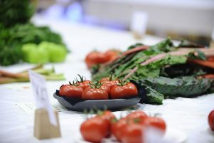 Polmont Horticultural Society annual show at Polmont Sports Centre on Saturday, September 7. Picture by Alan Murray.