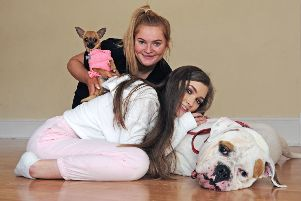 Falkirk Youth Theatre to perform hit musical Legally Blonde
