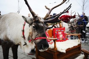 Last year's visit by Santa and his reindeer to Denny town centre. Pic: Alan Murray.