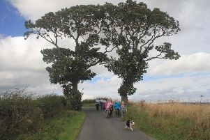 Walkers at the Kissing Trees