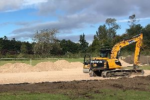 A number of trees have been cut down at the arboretum to make space for the link road.