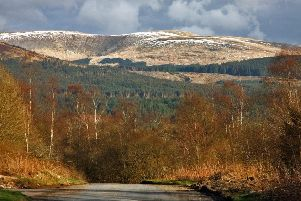 The stunning Galloway Forest Park. Photo by John Lindsay