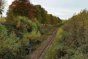 Network Rail invites residents to find out more about tree cutting