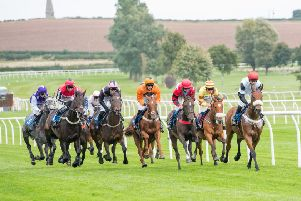 Leading Borders trainers go for Northern Lights glory at Carlisle