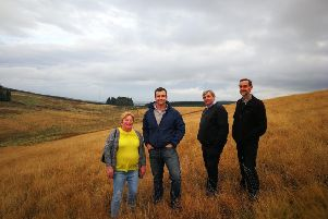Pines Burn wind farm set to go ahead after appeal