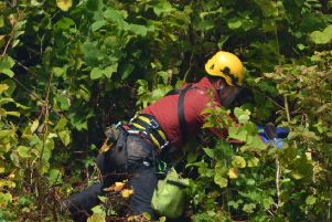 Specialist contractors were required to work in the gorge.