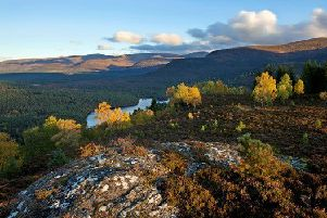Aberdeenshire nature spots under threat, says study
