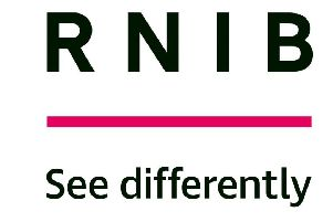 RNIB Scotland says blind and partially sighted pupils required additional support to achieve the same level as their sighted peers.