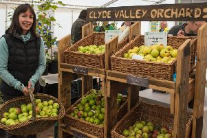 The move to restore the Clyde Valley orchards will be featured on the programme (Pic Sarah Peters)