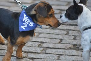Edinburgh: AUOB March for Independence.  Picture: Neil Hanna