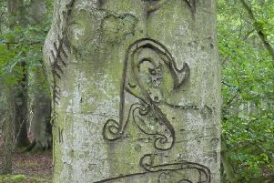 An inscribed Pictish standing stone