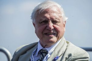 Sir David Attenborough made an unusually forthright appeal about the need to protect Scotland's kelp forests from industrial-scale harvesting (Picture: Peter Byrne/PA Wire)