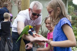 A young visitor feeds nectar by hand to the resident rainbow lorikeets at Edinburgh Zoo