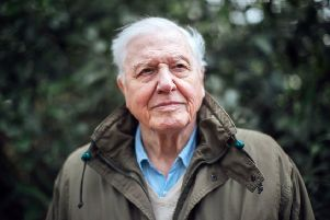"""Sir David Attenborough will present an """"urgent"""" new documentary film about climate change, looking at the potential threats to our planet and the possible solutions. Picture: Polly Alderton/BBC/PA Wire"""