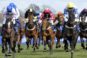 Punters can enjoy a flutter on the Scottish Grand National  Picture: Robert Perry