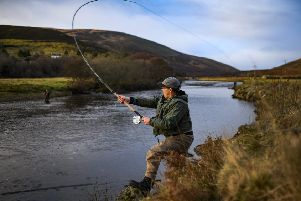Wild fisheries are worth around �80 million a year to the Scottish economy but salmon populations have been declining due to a variety of factors - including climate change and fish farming. Picture: J Mitchell/Getty Images