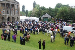 Horses and riders take a break at the Haining.