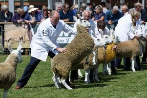 This week's Royal Highland Show coincides with the third anniversary of the EU referendum