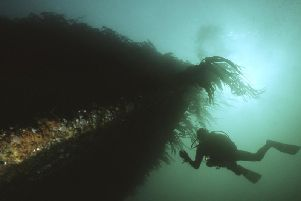 A diver inspects one of the wrecks at Scapa Flow in Orkney.