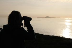 Looking out towards Dutchman's Cap on the Treshinish Isles, one of the locations included in the new Hebridean Whale Trail. PIC: HWDT.