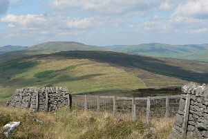 Langholm Moor, part of land being sold by Buccleuch Estates