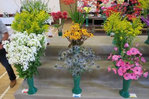 Colourful displays at Cupar Flower Show