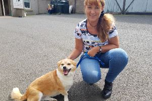 Ruth Codd from Selkirk with Charlotte the corgi cross from Bosnia, who was given first prize in the rescue dogs category.