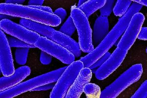 Health Protection Scotland have issued the warning about E.coli at an Egyptian resort