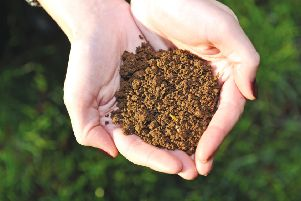 Why looking after our soil is crucial to preventing climate change