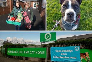Edinburgh Dog and Cat Home launch pet foodbank TODAY - here's what they're are offering