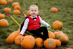 Halloween pumpkins are a major source of unnecessary food waste (Picture: Liam McBurney/PA Wire)