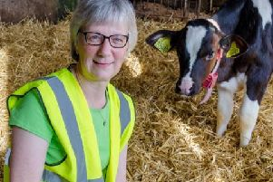 Lesley Skene of Mackies, pictured with one of the dairy herd. Picture: Contributed