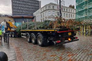 """Dundee City Council has replaced the threadbare fir at """"no extra cost"""". Picture: Mike Kemp"""
