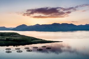 The Scottish Aquaculture Innovation Centre has secured a five-year finance deal. Picture: Lukassek