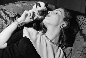 Elizabeth Sellars with her pet Siamese in 1952 (Picture: John Pratt/Keystone Features/Hulton Archive/Getty Images)
