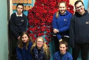 The Nicolson Institute Knitting Group Create Stunning Poppy Display
