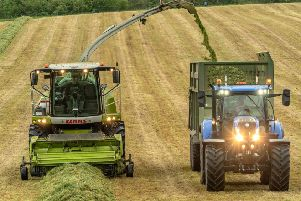 A silage crop being harvested  at New Belses Farm, Lilliesleaf.