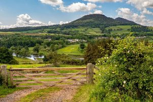 Overlooking the River Tweed towards Newstead and the iconic Eildon Hills on a summer's day.
