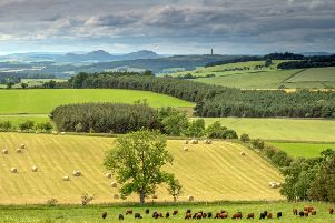 Looking towards the Eildon Hills and Peniel Heugh
