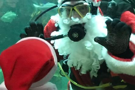 Santa will be taking time out of his busy schedule to dive in to feed the fish at Macduff Marine Aquarium.