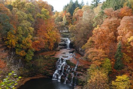 Falls of Clyde wins BBC Resreve of the year 2019
